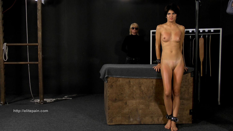 We provide nude models wanted halifax nova scotia free